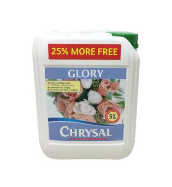 CHRYSAL PROFESSIONAL GLORY CASE