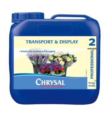 CHRYSAL # 2 HOLDING AND DISPLAY SOLUTION