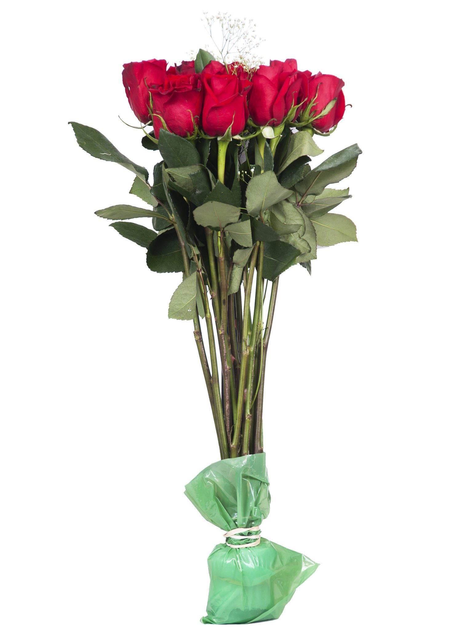 Chrysal cleaner chrysal flower food increasing the vase life of your flowers after valentines day reviewsmspy