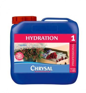 CHRYSAL 1 HYDRATION SOLUTION 1 GAL. X 4